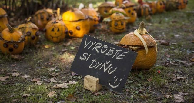 Trnavský rínek - október 2014