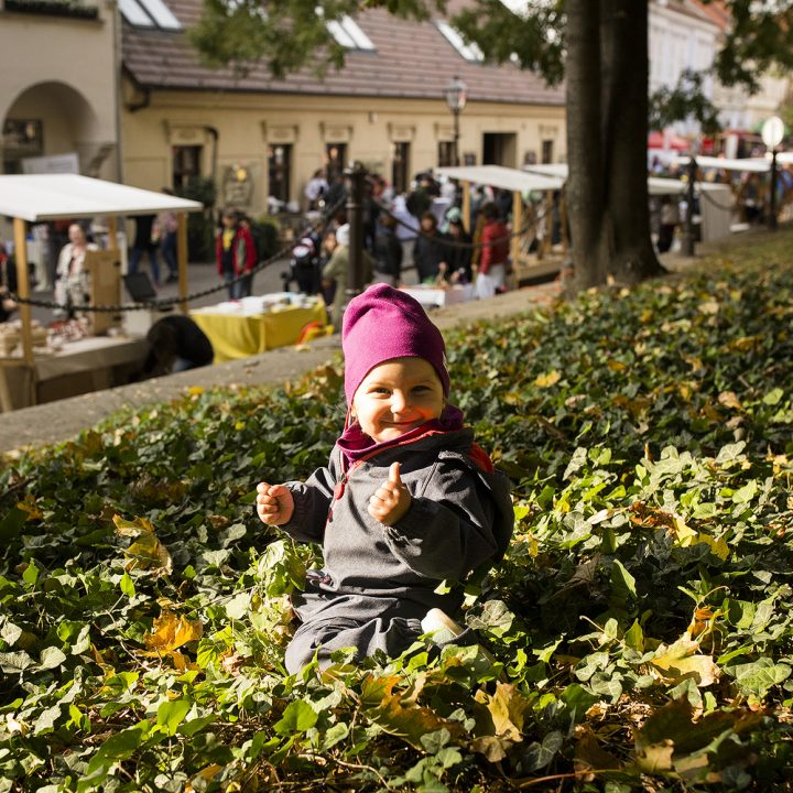 Trnavský rínek - október 2018